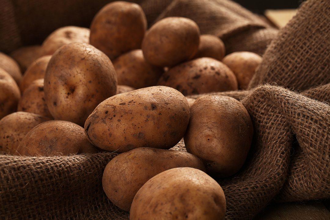 todo sobre el almidon de la patata